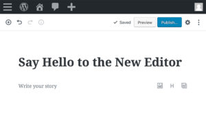 Novy WordPress update
